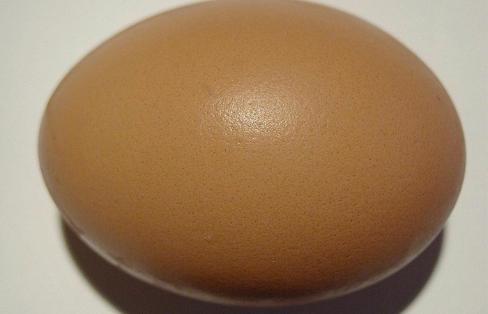 Bring it back: The Great Egg Obsession